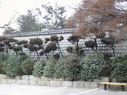 dowtwon seoul korea===famous state Pic3_18a